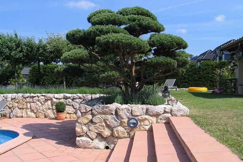 Mediterraner Garten- und Landschaftbau
