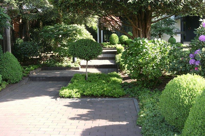 Gartenweg mit Bepflanzung