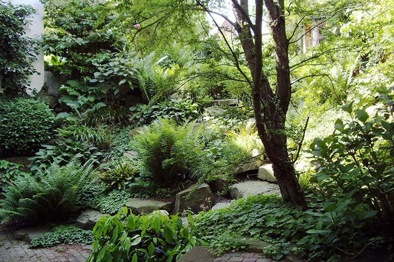 Grüner Garten in Viersen