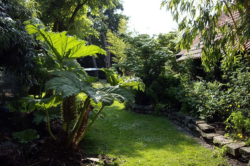 Begrünter Garten