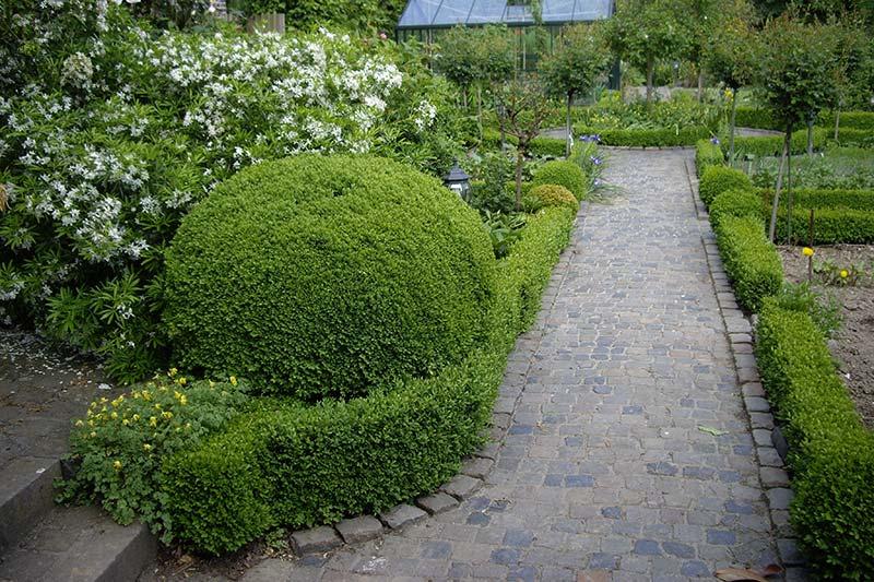 Natursteinweg durch Garten