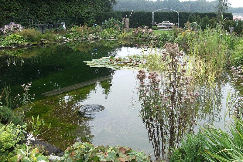 Schwimmteich bei Zanders Gartenbau